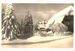 CPA N°3899  - HOTEL HEBELHOF - FELDBERG SCHWARZWALD + BEAUX TIMBRES - Feldberg