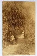 Horticulture Et Pepinere De Linkebeek Jardin De L´île De Robinson - Linkebeek