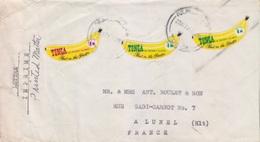N° 292 Et 295 X 2 (bananes) Obl. Le 22 NOV 71 Nukualofa Sur Lettre Imprimé Pour La France (Lunel) - Tonga (1970-...)