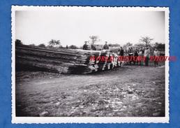 Photo Ancienne - BOURTH ( Eure ) - Intérieur D'une Scierie - Planche De Bois - Photographie M. Rungoat - Professions