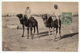 Tunisie--1907--- Chameliers ( Très  Animée) N°286  éd  ND Phot- -cachet-timbre - Tunesië