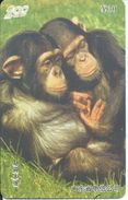 Singe Monkey Animal Jungle Télécarte Phonecard Telefonkarten (S399) - Chine