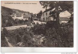 Saint Sernin Du Bois  Un Coin De Gamay - Francia