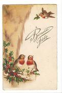 17112 - Bonne Fête Trois Oiseaux Rouge-gorge Et Houx - Nouvel An