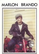 CARTE POSTALE GRAND FORMAT 10CM/15CM No 196 NEW LINE : MARLON BRANDO EN MOTARD SUR UNE MOTO ROUGE - Actors