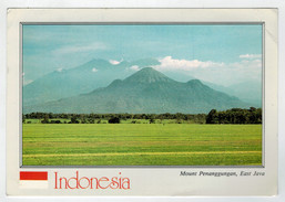 MAXI  CARD    INDONESIA   MOUNT  PENANGGUNGAN  --EAST  JAVA     2  SCAN   (VIAGGIATA) - Indonesia