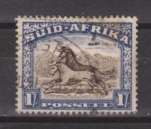 Zuid Afrika South Africa Used ; Buffel, Buffelo, Buffle, Bufalo NOW MANY ANIMAL STAMPS FOR SALE - Koeien