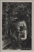 Küssnacht - Hohle Gasse - Tellskapelle - Photoglob No. 4873 - SZ Schwyz