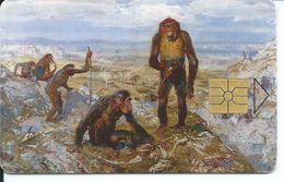 Primate Singe Monkey Animal Jungle Télécarte Tchéque Tchequie  Phonecard Telefonkarte (S.415) - Tchéquie