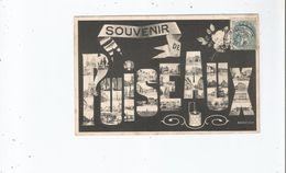 PUISEAUX (LOIRET) CARTE FANTAISIE PLUSIEURS VUES DE PUISEAUX 1905 - Puiseaux