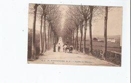 HASPARREN (B P) 16 ROUTE DE CAMBO (ATTELAGE DE BOEUFS)  1937 - Hasparren
