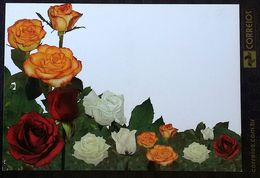 BRAZIL Post Card Roses Rose - Brazil