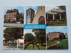 Groeten Uit BORSBEEK () Anno 19?? ( Zie Foto's Voor Detail ) ! - Borsbeek