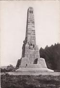 Carte Postale -- N° 315 163 C   -- REMIREMONT - Monument Aux Morts De La Grande Guerre - Remiremont