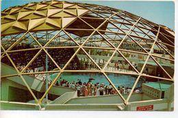 "The ""Golden Dome"" St.Petersburg Beach - St Petersburg"