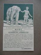 Cartolina Pubblicità Fenomeno Assoluto Susy 16 Anni Donna Pelle Elefante - Publicité