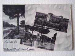 Cartoline Locale Emilia Romagna Milano Marittima Cervia Ravenna 1953 Pineta - Ravenna