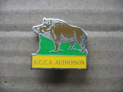 Pin's  ACCA De La Commune De AUTOISON (Association Communale De Chasse. Agréée). Sanglier - Animaux