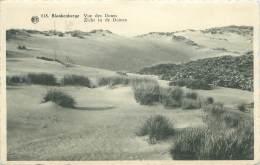 BLANKENBERGE - Vue Des Dunes - Blankenberge