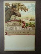 Cartolina Fiera Cavalli Verona Marzo 1907 Cromolitografia Equitazione Ippologia - Altri