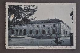 Cartolina Lombardia Mantova Palazzo The Te Animata Bicicletta 1917 - Mantova