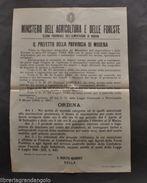 Manifesto Modena Disposizioni Mulini Molini Macinato Frumento Cereali  1943 - Vecchi Documenti