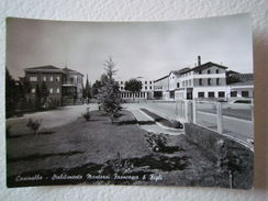 Cartoline Locale 1959 Emilia Romagna Modena Formigine Casinalbo Montorsi - Modena