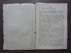 Manoscritto Tosatti Divisione Possessione Abbaretti Papotti Mirandola 1843 - Vecchi Documenti