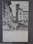 Cartoline Lombardia Mantova Via Broletto Animata Negozi Calesse 1910 - Mantova