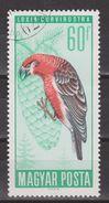 Hongarije, Hungary, Ungarn, Magyar Used ; Parod Parkiet NOW MANY BIRD STAMPS FOR SALE - Papegaaien, Parkieten