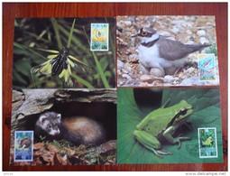 WWF Liechtenstein Animals Animaux Tiere Dieren 1989  4 CM MC MK Carte Maximum Maximumkarte Maxikarte Maxicard - Maximumkarten