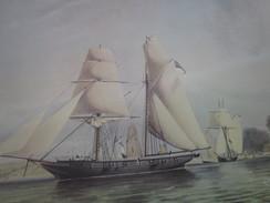 Majestueux Voiliers D'Autrefois XARIFA En Course 1835 Autres Collections-Art & La Voile-Nautique & Maritime - Maritime & Navigational
