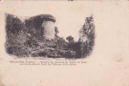 [85] Vendée > Tiffauges  Ruine Du Chateau De Gilles De Retz Carte Nuage - Altri Comuni