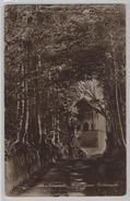 Küssnacht - Hohle Gasse - Tellskapelle - Photoglob No. 154 - SZ Schwyz