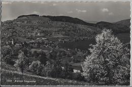 Kurort Immensee Am Zugersee - Photo: Rud. Suter - SZ Schwyz