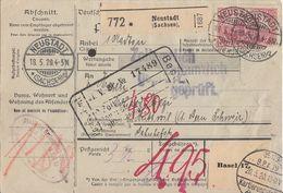 DR Paketkarte Mif Minr.91II,114,4x 115 Neustadt 18.5.20 Gel. In Schweiz - Covers & Documents