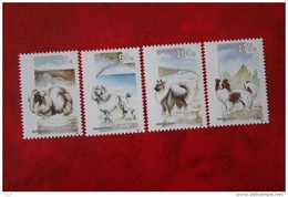 Honden Hunde Dogs Chien NVPH 1030-1033 1993 MNH POSTFRIS NEDERLANDSE ANTILLEN  NETHERLANDS ANTILLES - Niederländische Antillen, Curaçao, Aruba