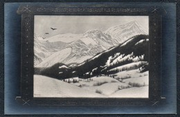 2167 - Alte Künstlerkarte - Erotik - Winterlandschaft Im Berner Oberland - Fidus TOP - Fidus