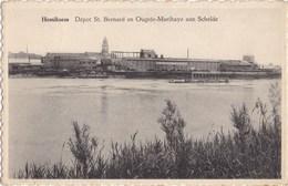 HEMIKSEM - HEMIXEM -1950-1970 - Dépot St. Bernard En Ougrée-Marihaye Aan Schelde - Hemiksem