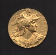 """Médaille En Bronze Doré. Marianne Au Coq . """"OFFERT Par M. AVOINNE SÉNATEUR"""". Graveur L. BOTTÉE . - Professionals / Firms"""