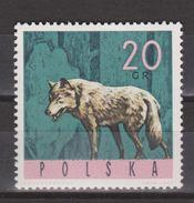Polen, Poland, Pologne, Polska MNH ; Wolf, Lobo, Loup, Wulf NOW MANY ANIMAL STAMPS FOR SALE - Autres