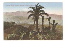 Tenerife - Valle Orotava Nopales (vulgo Tuneras) - Tenerife