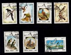 Oiseau / Birds. AFGHANISTAN. - Afghanistan
