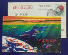 Dolphin,shark,blue Planet,China 2000 Fujian Post Transformation Of The Universe Pre-stamped Card - Dauphins