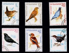 Birds - BULGARIJE - Bulgarije