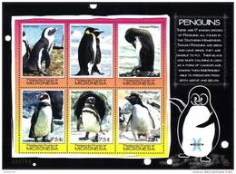 ( 1376 )  Micronesia - Fauna - Bird - Penguins - Penguins