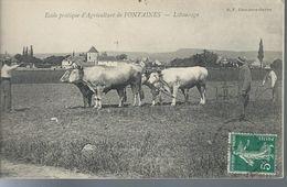 71 FONTAINE école D'Agriculture Le Labourage - Wagengespanne