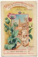 Chromo Plantes Medicinales Pavot Opium  Origine Perse Pub Chocolat Poulain Size 7 By 10,5 Cms - Iran