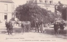 Dordogne Illustrée Attelage De Bœufs (carte Rare) - France