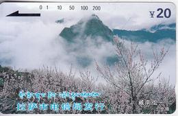 TIBET(Tamura) - South Tibet, Lhasa City Telecom 20 Yuan, Tirage 20000, Mint - Other – Asia